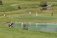 Golf holidays in Bormio