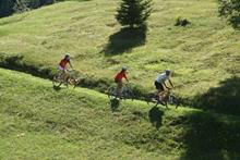 Mountainbike tour in bormio