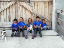 Junior Camp In fattoria