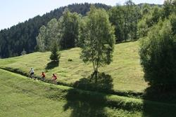 Click to view album: Mountain bike in Bormio